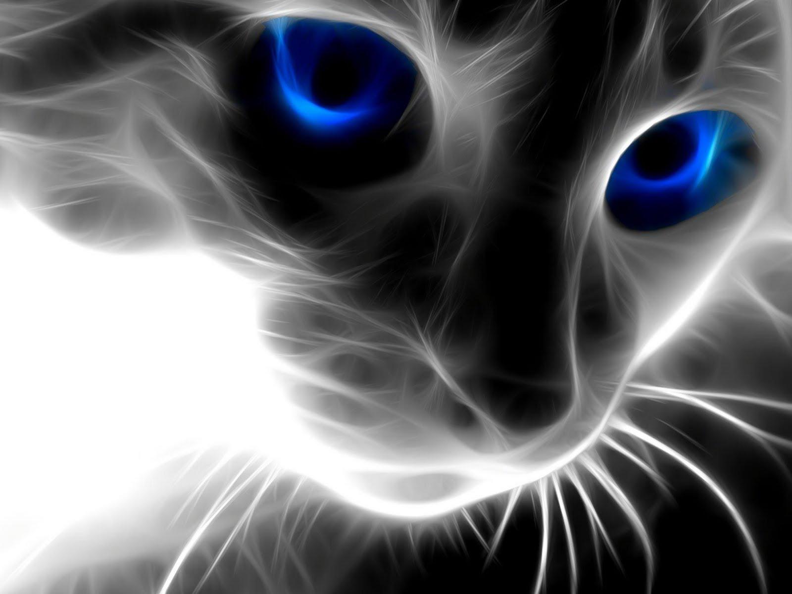 Cat Eyes abstract photo