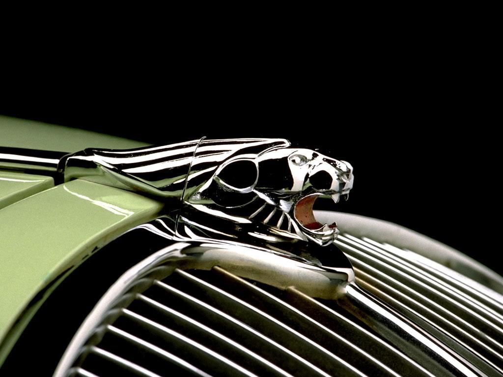 Elegant Jaguar Logo Photo Picture HD Wallpaper Image Gallery